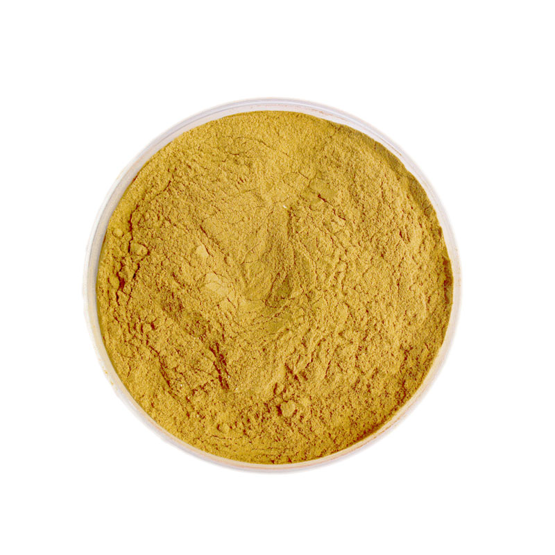 Ginsenosides,American ginseng extract,Panax extract
