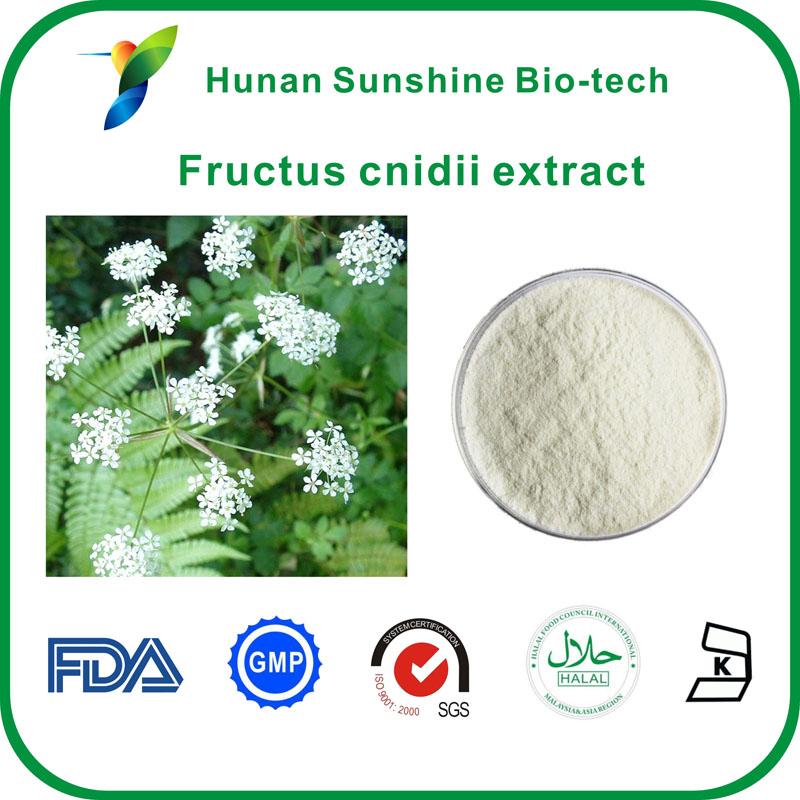 Fructus cnidii extract,Osthole,20% 50% 98% Osthole