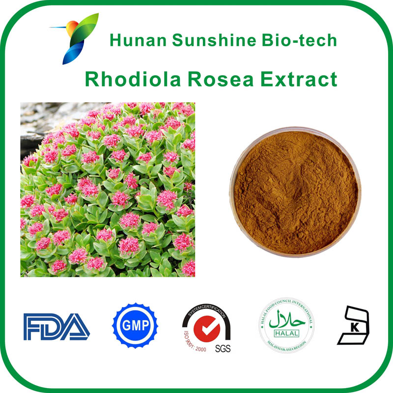 Rhodiola Rosea Extract,1% 3% salidroside rosavin,herbal extract