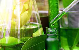 Plant extract,Medical market,