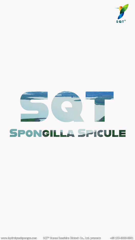 spongilla suppliers, spongilla extract powder wholesale, hydrolyzed sponge 98%, fresh water sponge