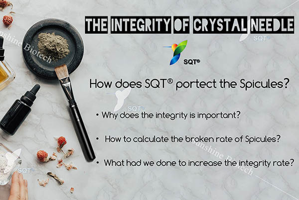 integrity of spongilla spicule, integrity rate, Sponge Spicule Beauty Therapy
