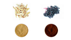 Cosmetic Raw Material,Herbal Extracts for Cosmetic,Herbal Extracts Activity for Cosmetic