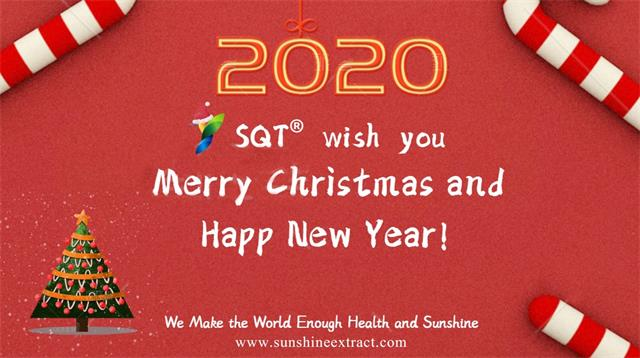 2020, new year, happy, success, prosperity